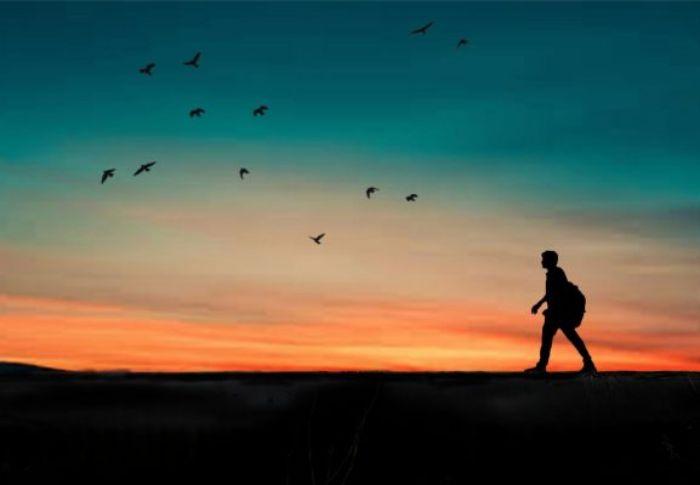 Giấc mơ này chứng tỏ bạn là một người sống nội tâm, khép kín